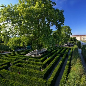the maze at schonbrunn